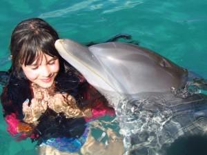 JamaicaDolphin